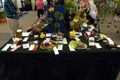F1-Single-Cut-Flower-exhibit-table