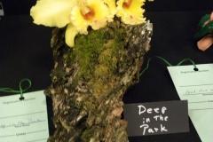 F2-Deep-in-the-Park-Eunice-Walker