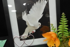 Cut-Flower-Multi-from-a-Single-Plant-Peace-Love-Orchids-eunice-Walker