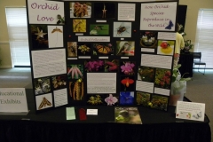 Educational-2nd-Place-Tricia-Rose-Orchid-Love