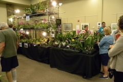 Vendor-booth-1-Suncoast-Orchids
