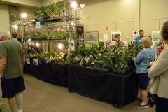 Vendor-booth-1-Suncoast-Orchids